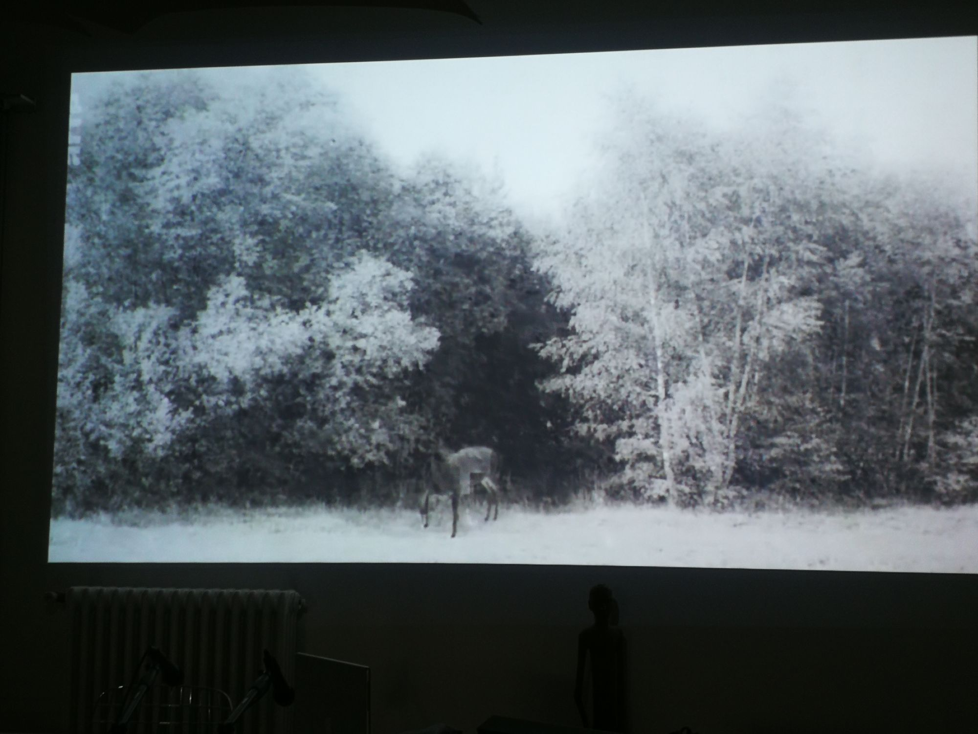Foto di Kiarostami (grazie a Tenstar Community)